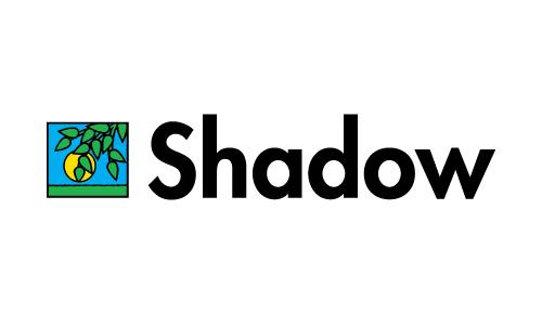 shadow copy.jpg