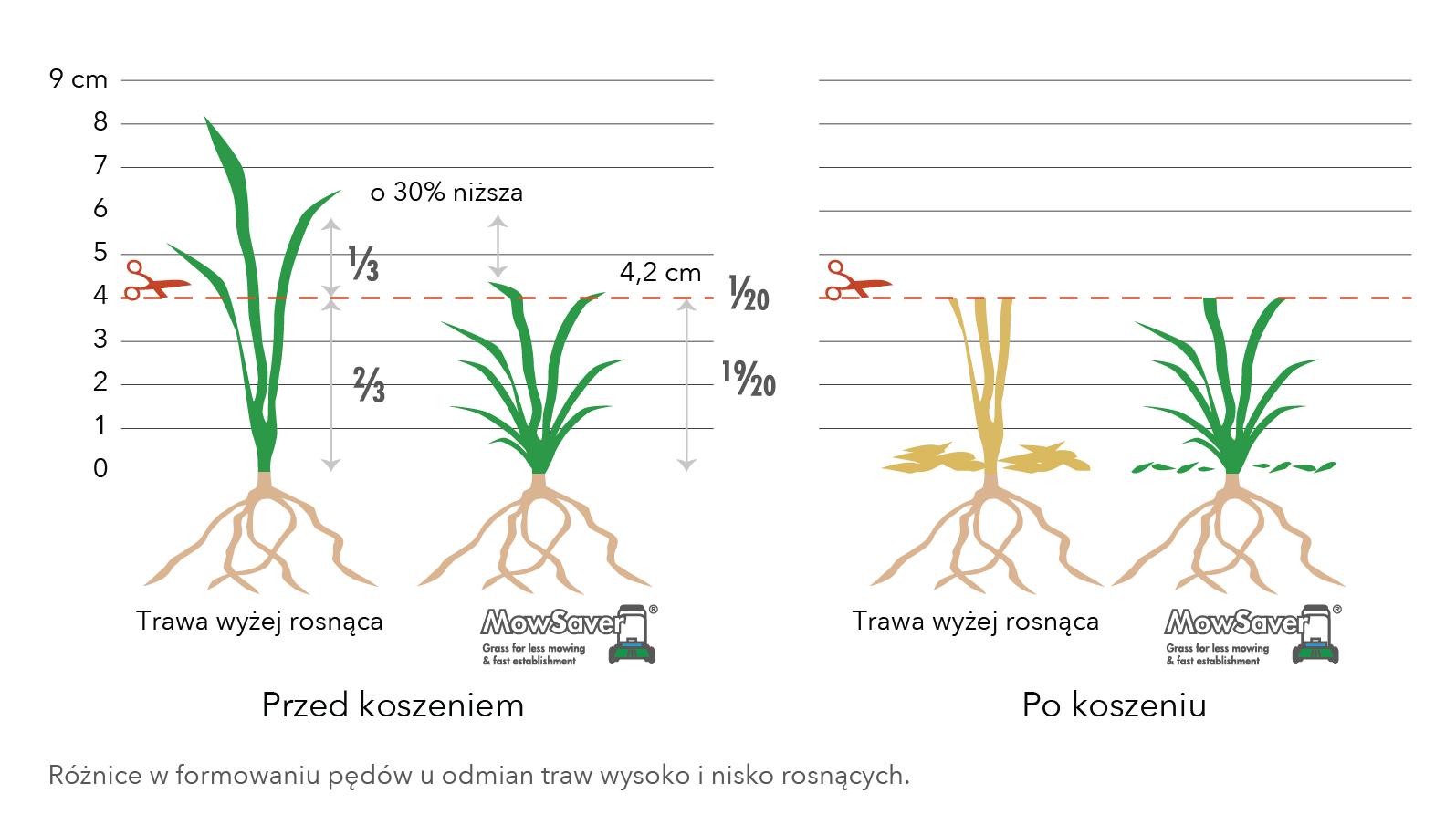 Wykresy-08.jpg